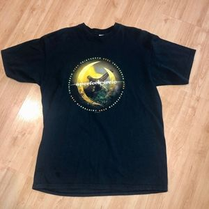 2003 A Perfect Circle Graphic Band Concert Tee